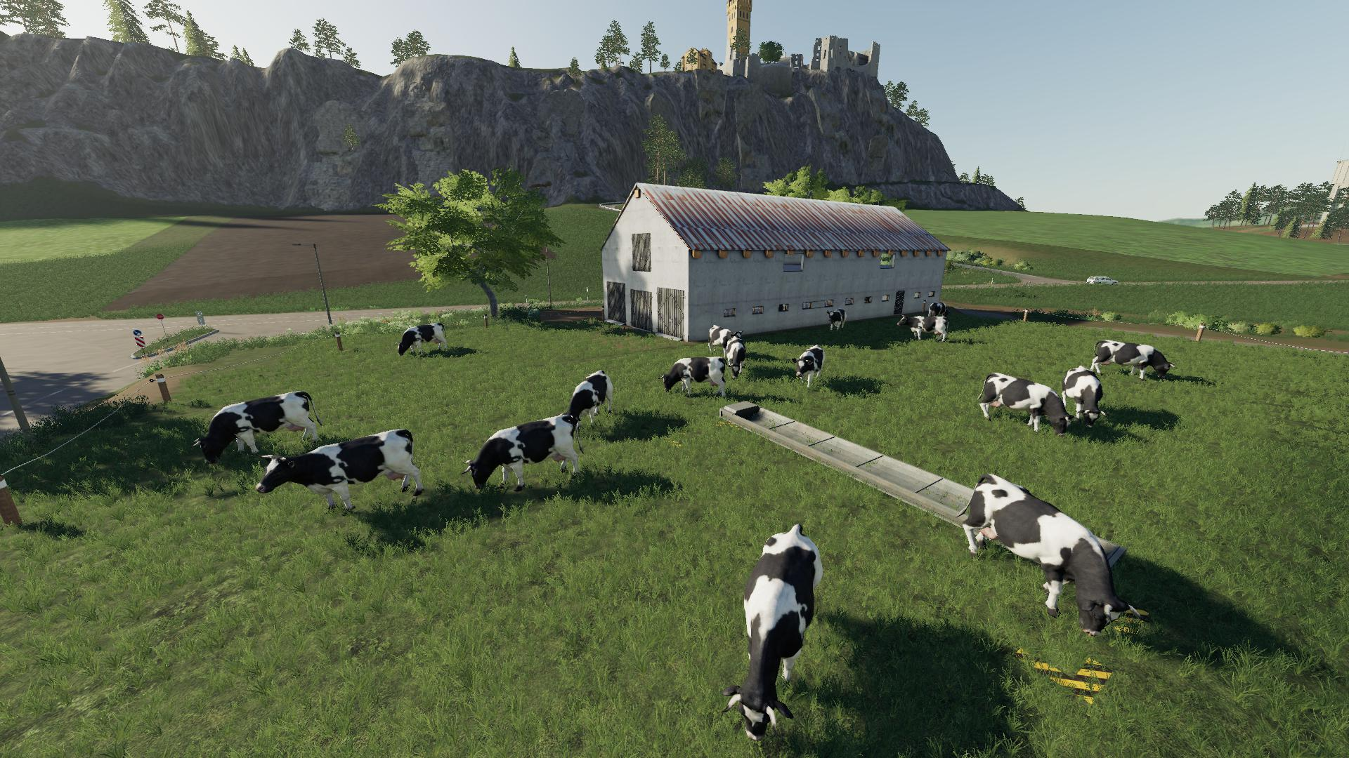 Polish Cow Pasture V1.1 FS 19